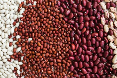 Beans background. Different varieties of bean seeds.