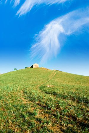 the green grass with the  on the hill photo