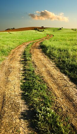 Track in a spring landscape at the sunset photo