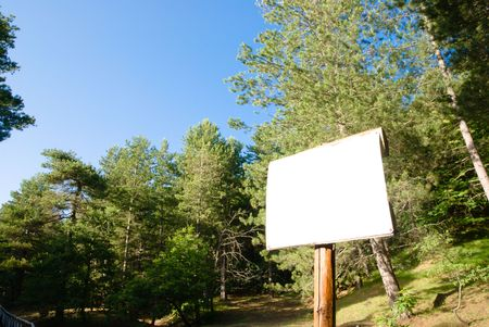 Empty white signboard in the wood photo