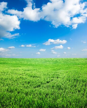 green spring field Stock Photo - 3368500