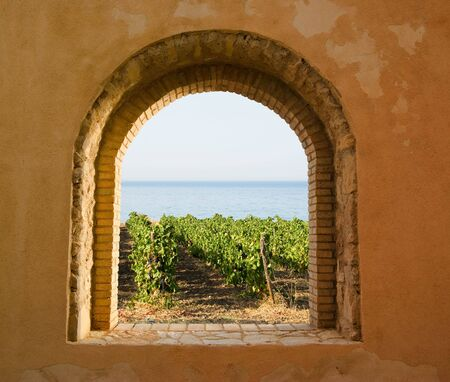 arched: arched window on the vineyard Stock Photo