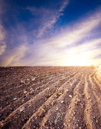 plowed: plowed land on background cloudy sky Stock Photo