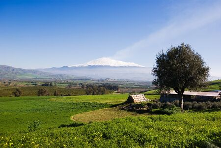 rural landscape and snowy volcano etna photo