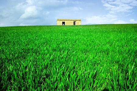 house with green grass on the hill Stock Photo - 4261474