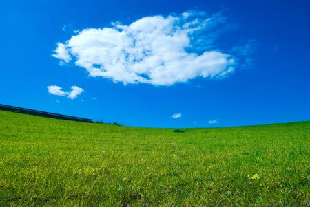 meadowland: green lawn and sky blue with white cloud