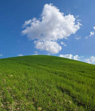 grassy: green hill with white clouds