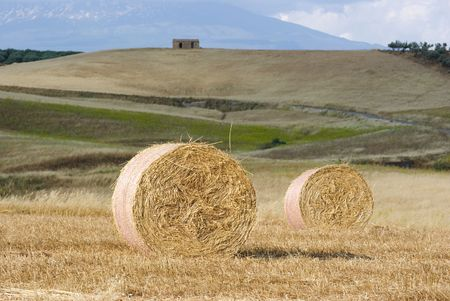 two Roll of hay on background rural landscape blurred  photo
