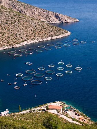 aquaculture: Fisheries in blue sea of Peloponnese, Greece  Stock Photo