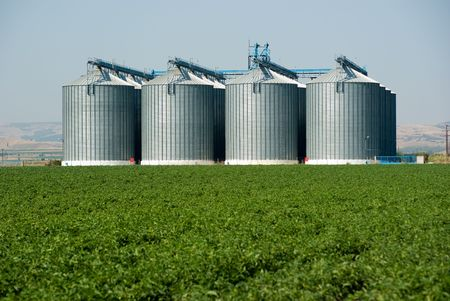foreground green field in background four Silos metal