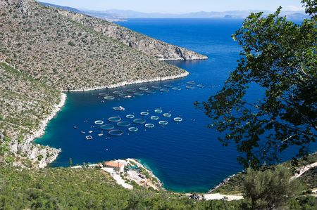 fisheries: Fisheries in blue sea of Peloponnese, Greece Stock Photo