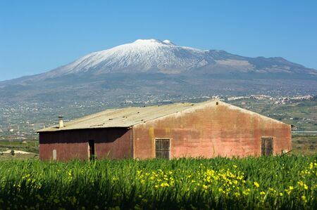 yellows: blurred yellows flower and abandoned red barn under the volcano Etna, Italy