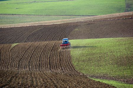 plowed field: a blue tractor with a plow furrows the earth