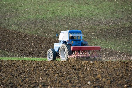 furrows: a blue tractor with a plow furrows the earth