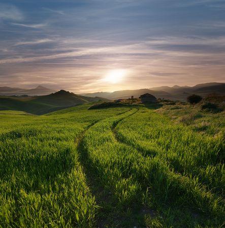 horizonte: pistas de tractor cruzando una hierba verde con una caba�a abandonada contra cielo nublado en la puesta del sol y el horizonte monta�oso brumoso Foto de archivo