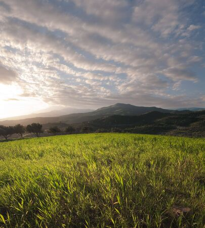 the sun is setting on a field of grass on a hilly background with a cloudy sky Stock Photo - 6833775