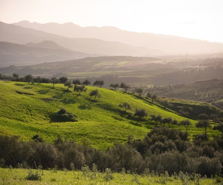 sicilian farmland with green pasture and layered landscape at the evening Stock Photo - 7168512