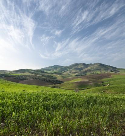 sycylijski: nachylenie trawiasta na wzgórzach zapleczem Sycylijska