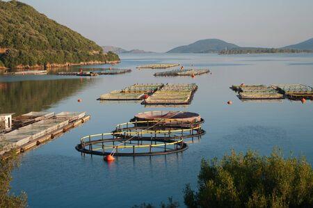 pesquero: pesca en el mar de Igumenitsa, Grecia  Foto de archivo