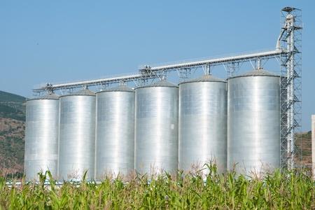 mais: six silver silos, green mais and blue sky