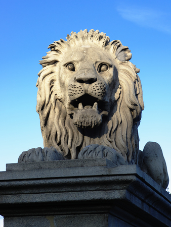 obuda: Lion of Chain Bridge in Budapest, the lions were carved in stone by the sculptor, Marschalko János. They are visibly similar in design to the famous bronze lions of Trafalgar Square