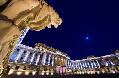 obuda: Budapest, the Lions Court of Buda Castle or Royal Palace  and one of four lions of arched gateway
