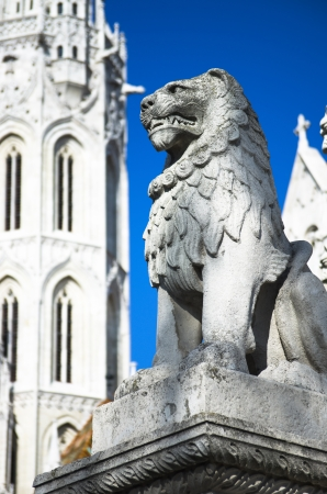 obuda: sculpture of a stone lion in Matthias Church on Castle Hill in Budapest