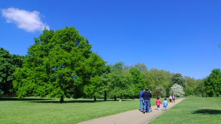 more mature: London, England - May 27, 2013  a family is walking in an alleyway in the Green Park of City of Westminster  Two children, a male and a female, are walking hand in hand and it does the same a more mature couple who comes to meet them, Green Par is one of