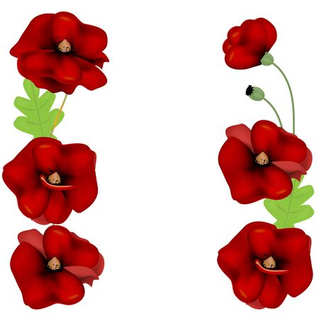 frame of red poppies on a white background