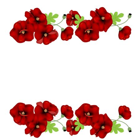 frame of red poppies with place for text on a white background Standard-Bild - 138766664