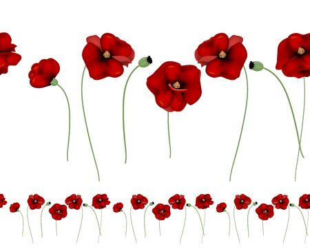 Red poppies horizontal seamless pattern on a white