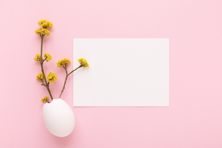 Mockup with white card and blooming branches in eggshell on pink background. Spring and Easter greeting card concept. Top view. Stockfoto