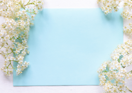 Spring flowers on a blue background Stock Photo - 79041622