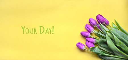 purple buds of tulips on a bright yellow background. Contrast. postcard image of March 8, mothers day, daughters day, valentines day Foto de archivo