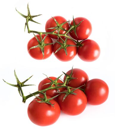 two branch of a fresh red tomato cherry, isolated on a white background