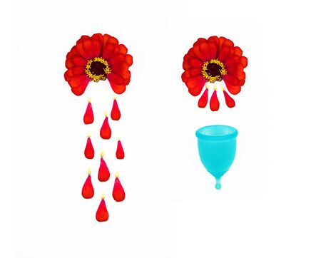red zinnia flowers delicately demonstrate the period of female menstruation for woman s personal hygiene products. red petals fall like drops of blood into a blue menstrual cup