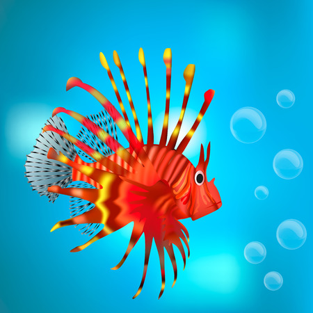 blue fish: red fish on a blue background Illustration