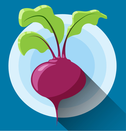 Beetroot icon. Vector icon in modern flat design