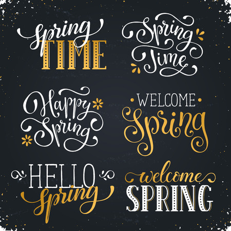 phrases: Hand written Spring time phrases in white and gold. Greeting card text templates on blackboard. Welcome Spring lettering in modern calligraphy style. Hello Spring wording. Illustration