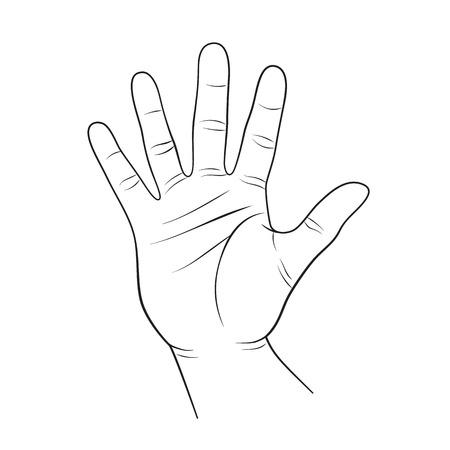 Menselijke hand schets lisolated op witte kronkelen. Human palm vorm. Hoge vijf teken contour zwart op wit.