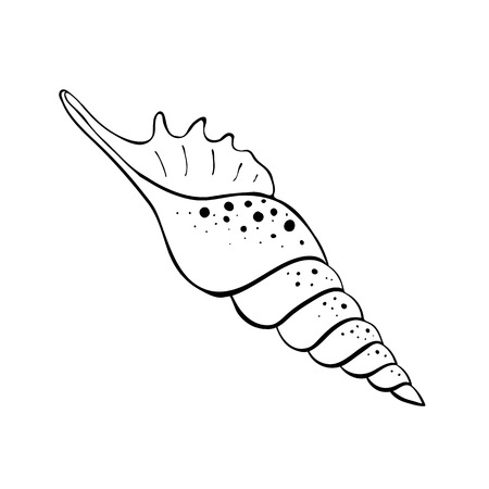 Hand drawn sea shell. Shellfish outline. Seashell icon in black isolated on white background. Vector Illustration