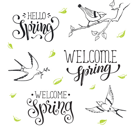 Hand written spring time phrases with birds greeting card text hand written spring time phrases with birds greeting card text templates isolated on white background m4hsunfo