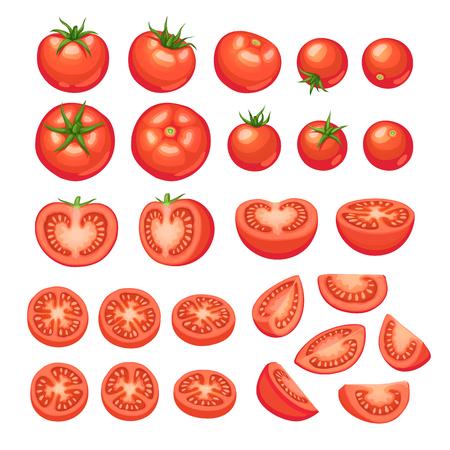 Raccolta di pomodori tritati isolato su sfondo bianco. Illustrazione di fette di pomodoro. Vettoriali