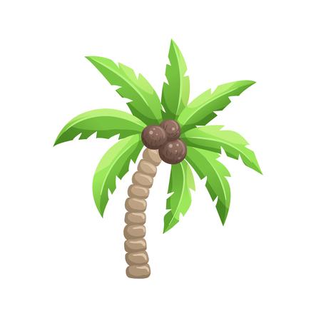 leaf logo: Bright cartoon palm tree icon. Colorfulcoconut palm symbol isolated on white background. Vector illustration. Illustration