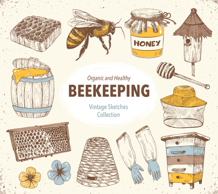 Hand drawn apiary objects. Beekeeping inventory in sketch style. Stock Illustratie
