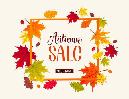 Autumn sale banner with bright colorful leaves. Autumn foliage vector illustration. Fall discount poster design. Square frame composition. 向量圖像