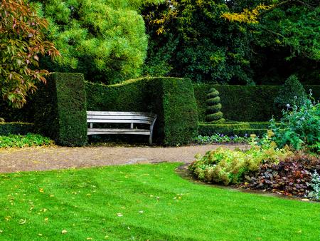 nicely: Bench in nicely trimmed bushes in Regent39s park London. Landscape design