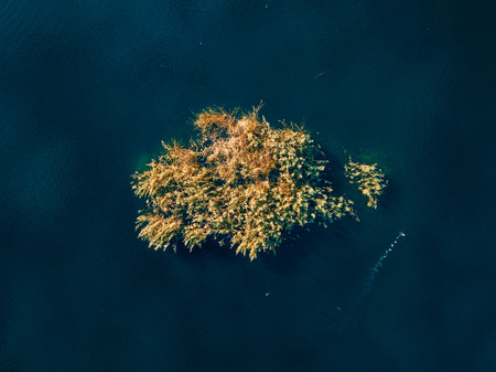 Autumn aerial drone nature landscape with trees and lake Stock Photo