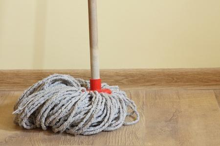 Mop in the room plank flooring