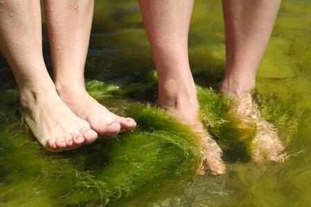 Human foot in the seaweed sea